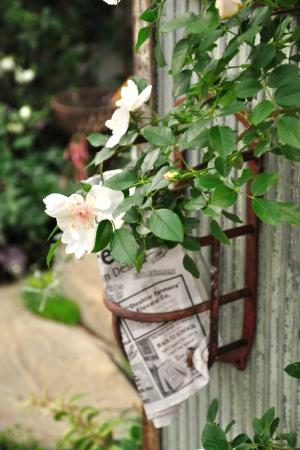 Bara_gardening_15