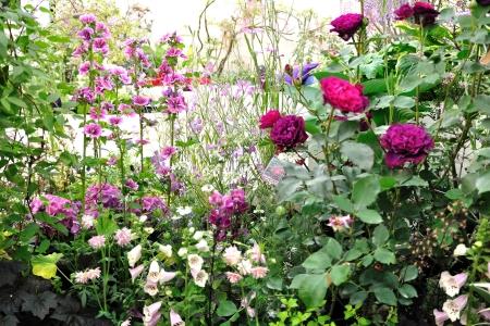 Garden_09