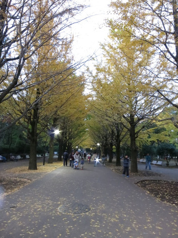 Autumnal_leaves_hikarigaoka_02