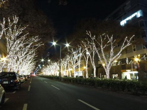 Omotesando_13