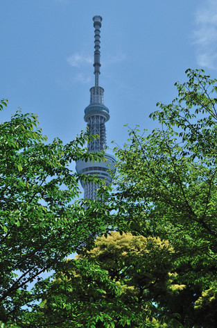 Tokyo_sky_tree_29