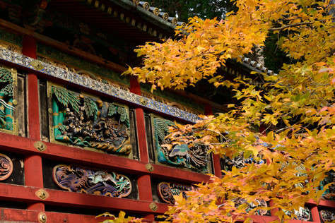 Nikko_in_autumn_035