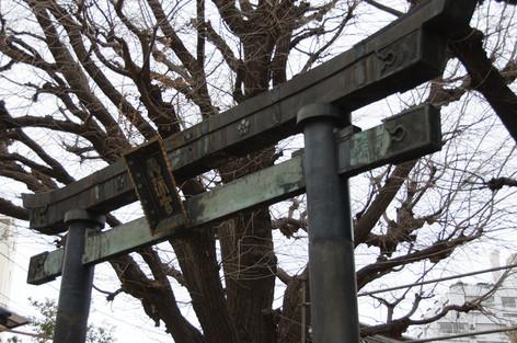 Yushima_tenjin_plum_blossom_festi_3