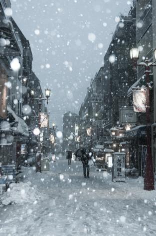 2014_heavy_snow_metropolitan_tok_10
