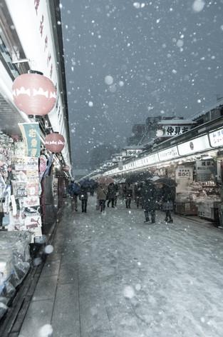 2014_heavy_snow_metropolitan_tok_11