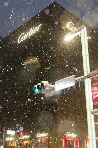 2014_heavy_snow_metropolitan_tok_15