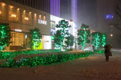 2014_heavy_snow_metropolitan_tok_18