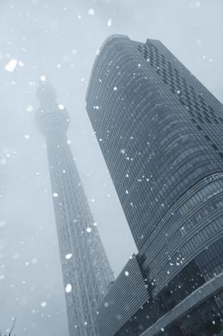 2014_heavy_snow_metropolitan_toky_2