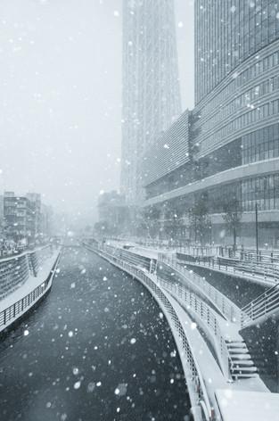 2014_heavy_snow_metropolitan_toky_3