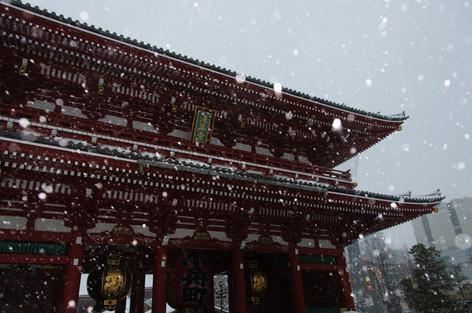 2014_heavy_snow_metropolitan_toky_6