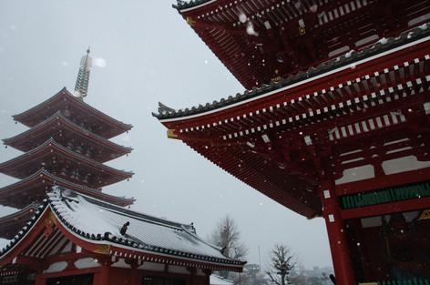 2014_heavy_snow_metropolitan_toky_7