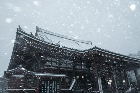 2014_heavy_snow_metropolitan_toky_9