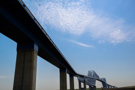 Tokyo_gate_bridge_01