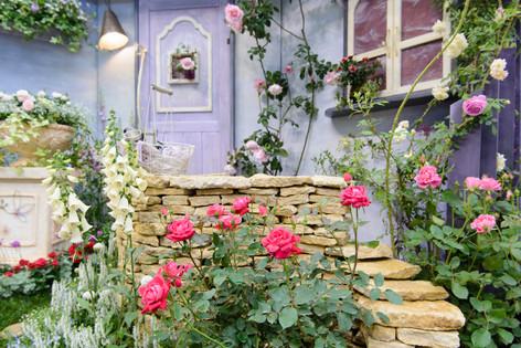 International_roses_gardening_sh_14