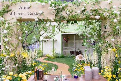 International_roses_gardening_sh_17