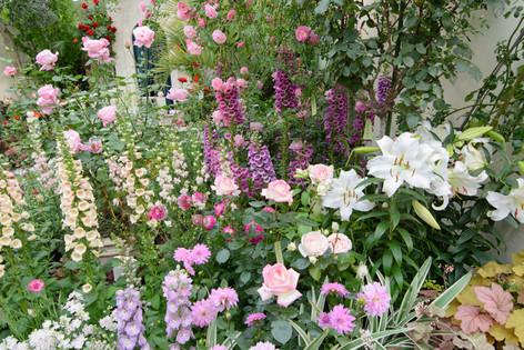 International_roses_gardening_sh_21