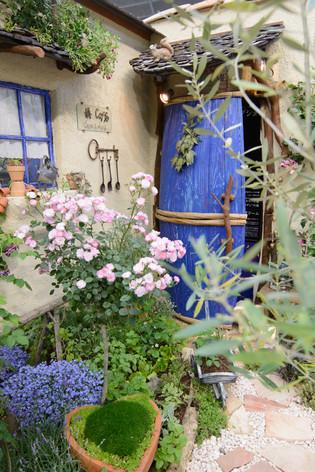 International_roses_gardening_sh_30