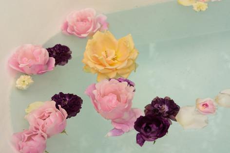 International_roses_gardening_sh_35