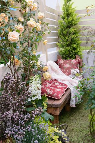 International_roses_gardening_sh_46