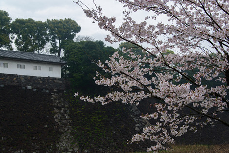 Imperial_palace_12