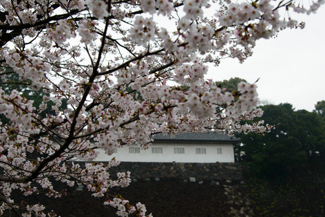 Imperial_palace_14