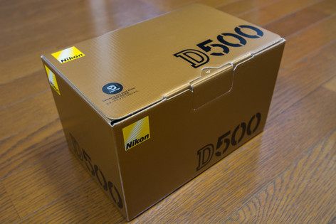 D500_01