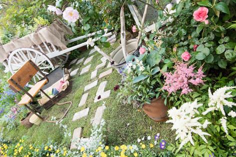 2016_roses_gardening_35