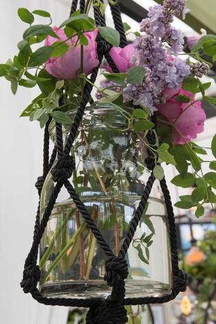 2016_roses_gardening_37