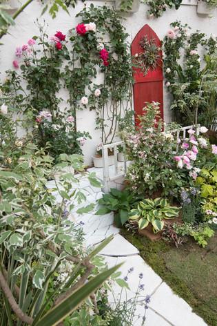 2016_roses_gardening_38