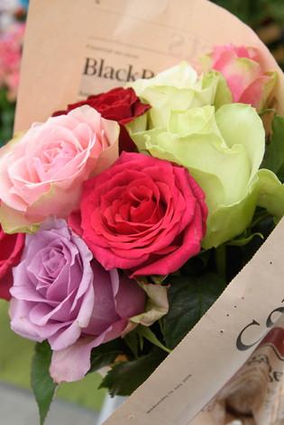 2016_roses_gardening_50