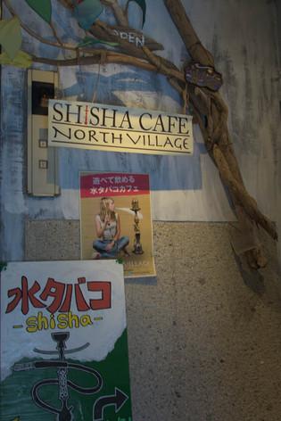 Shimokita_21