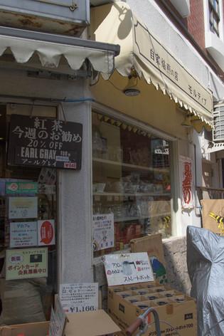 Shimokita_29