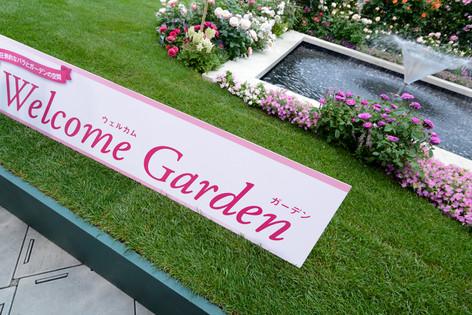2017_roses_gardening_003