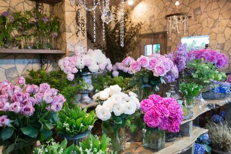 2017_roses_gardening_024