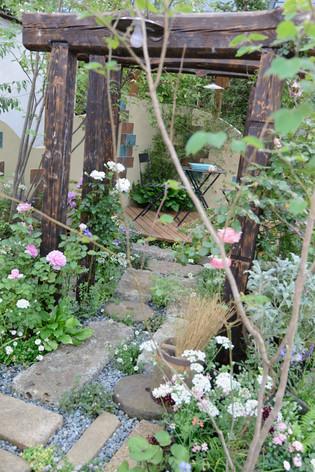 2017_roses_gardening_081