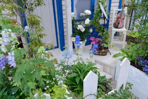 2017_roses_gardening_107