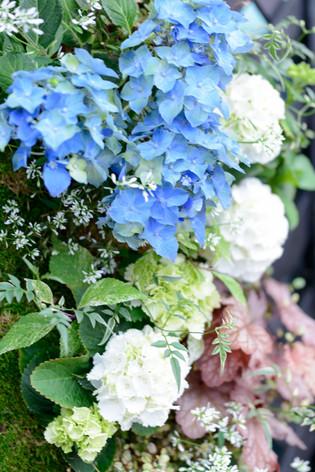 2017_roses_gardening_133