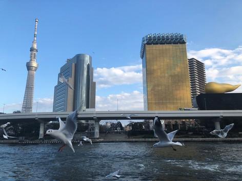 Sumida_river_04